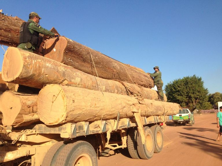 illegal-logging-rondonia-brazil-credit-bpa