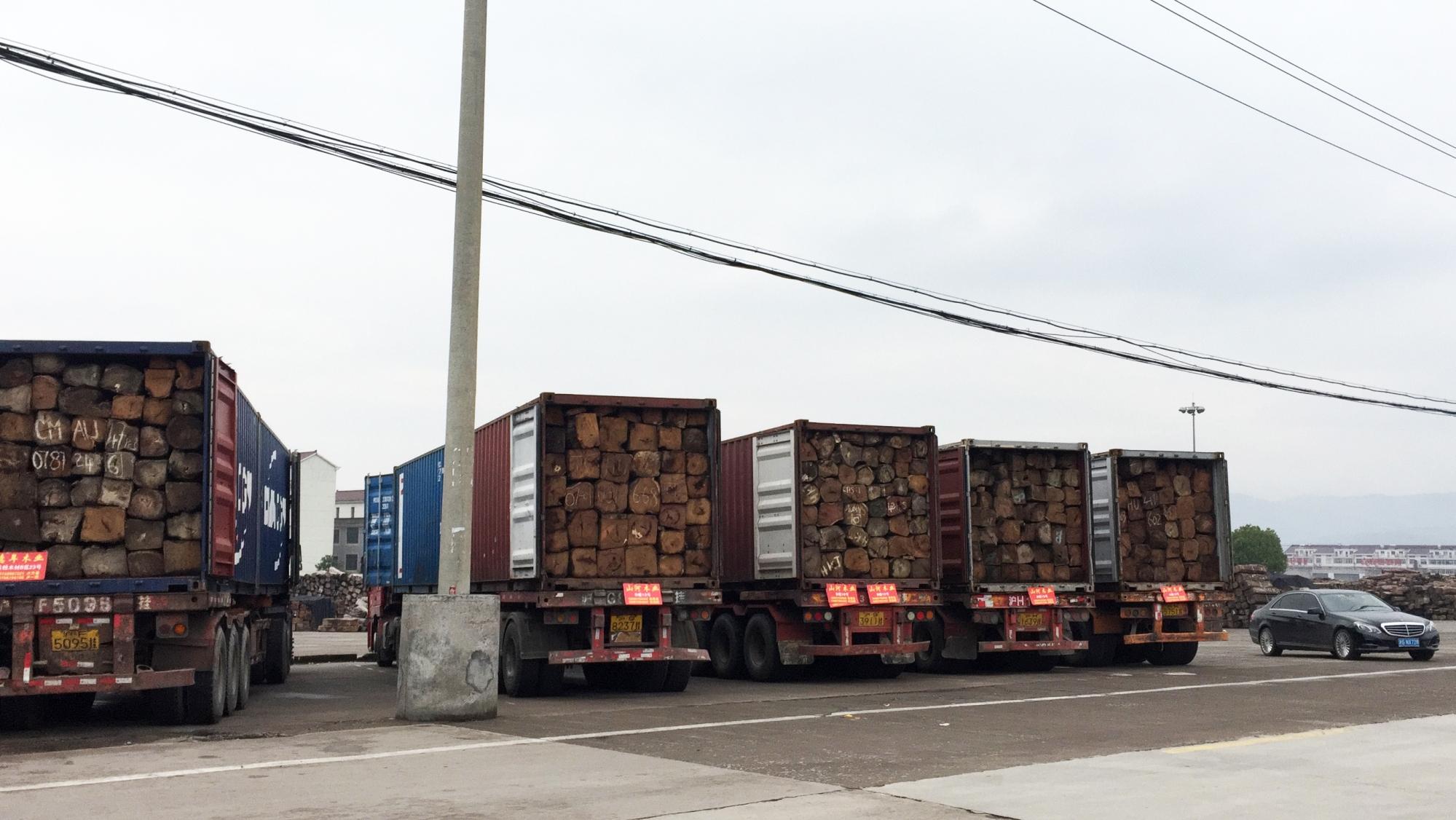 koss-pterocarpus-erinaceus-nigeria-rosewood