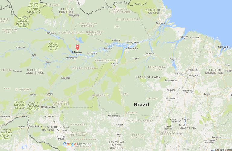 Brazil seizes 444 containers of wood in an investigation into illegal timber with fraudulent forest origin documents.