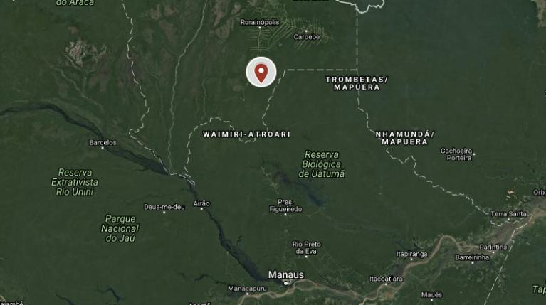 roraima madeira illegal logging forest