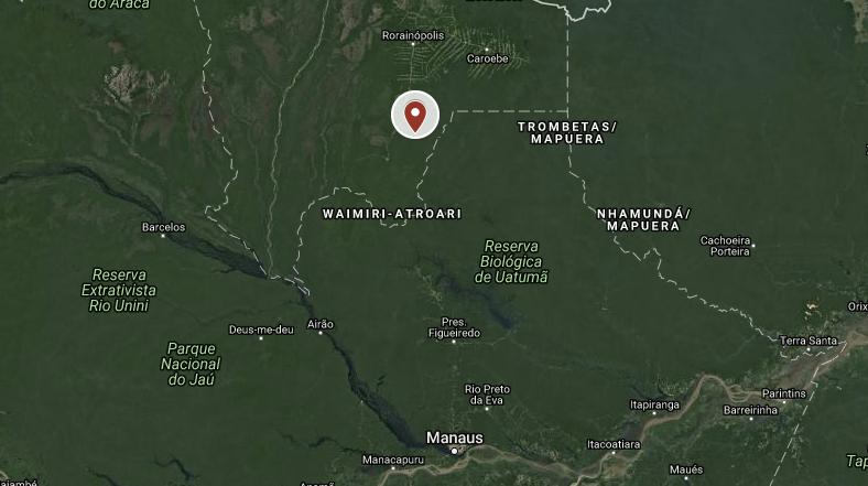 brazil timber illegal logging roraima